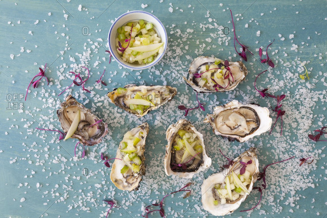 Oysters in shells with salsa