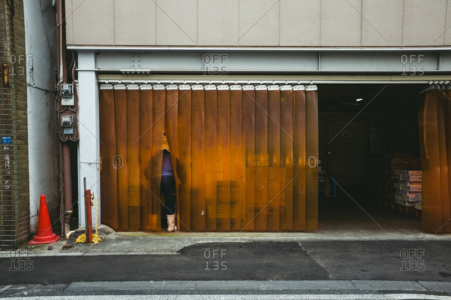 11/28/16: Fish monger in Tokyo residential neighborhood