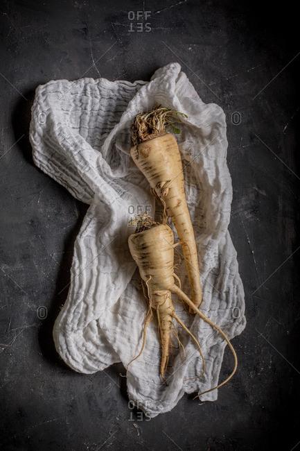 Fresh parsnip on dark background