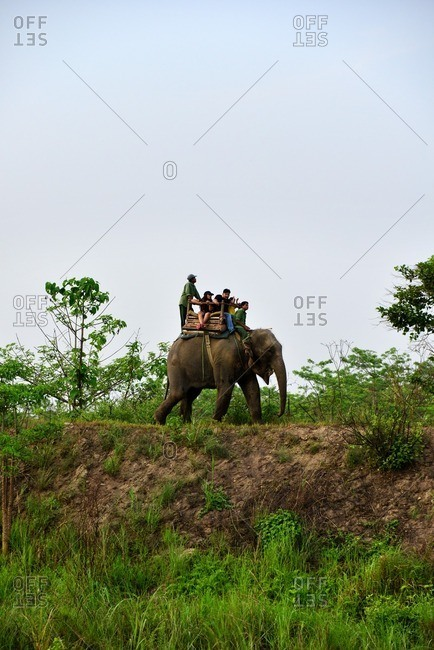 Chitwan National Park, Nepal - April 19, 2016: People riding an elephant through Chitwan National Park