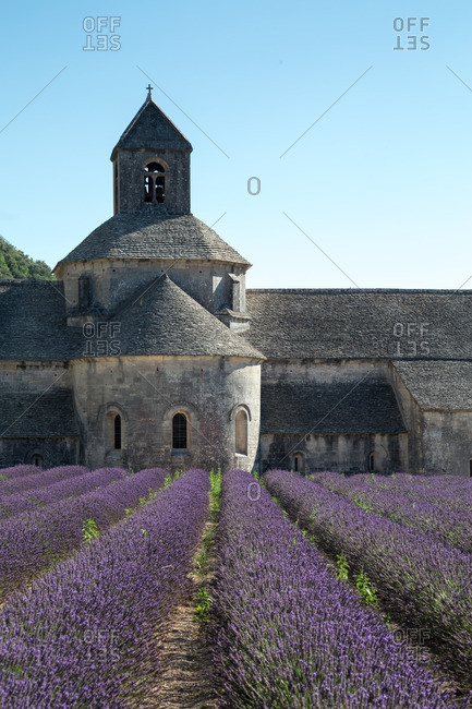 Abbey by field of lavender, France