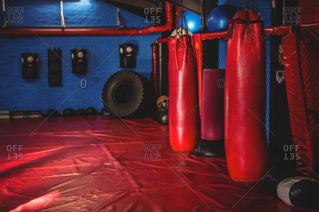 Red punching bags hanging on fitness studio