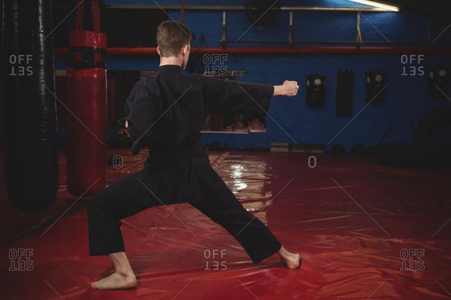 Karate player performing karate stance in fitness studio