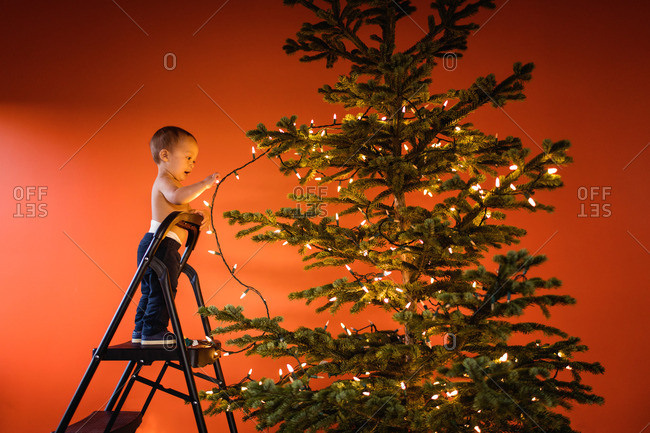 Toddler boy on a step ladder holding a string of lights on a Christmas tree