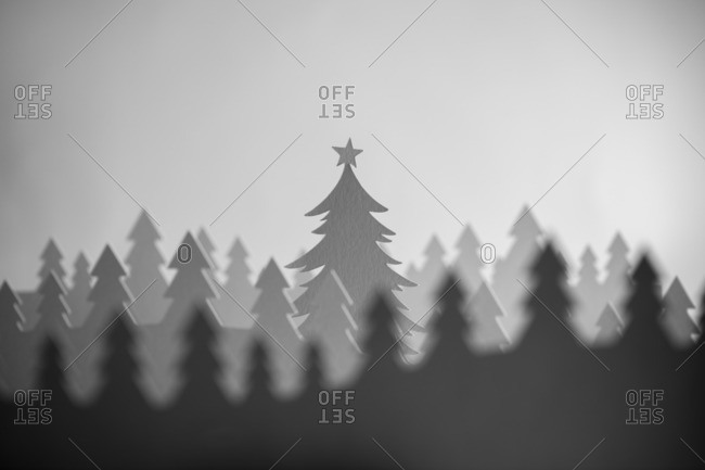 Forest with Christmas tree