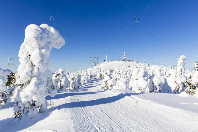 Snow-covered road and trees leading to a distant ski lift