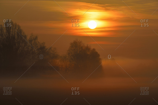 Sun rising over trees in a misty countryside