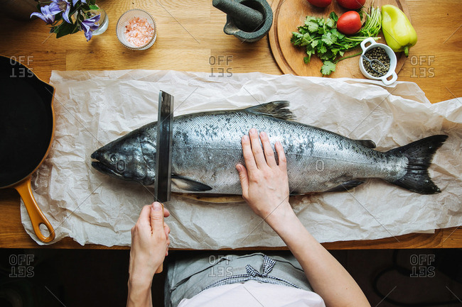 Person cutting a raw fish on paper on a wooden counter