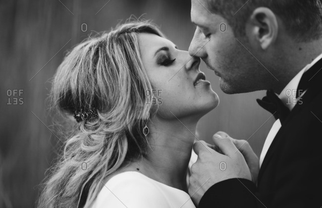 Bride and groom about to give kiss
