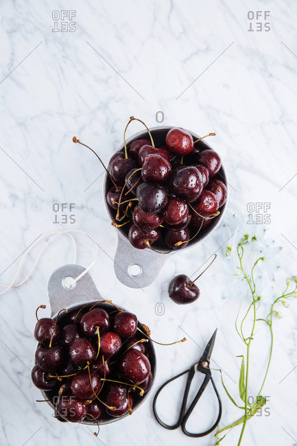 Black cherries on a marble counter with scissors and flowers