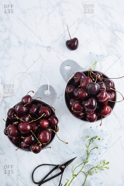 Black cherries in dishes on a marble counter with scissors and flowers