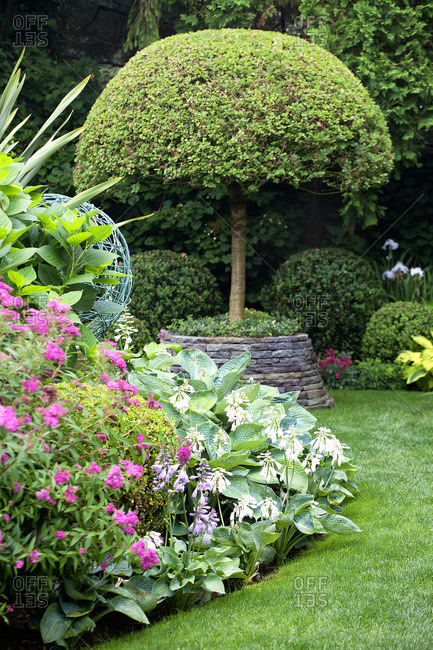 Elegant garden with flowers and trees
