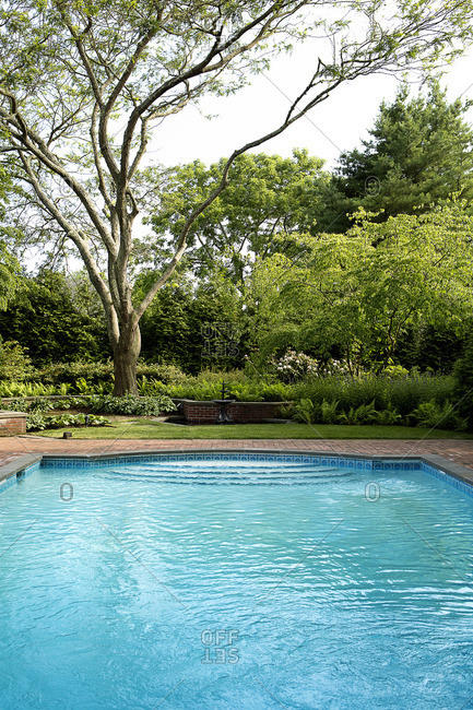 Large swimming pool in garden