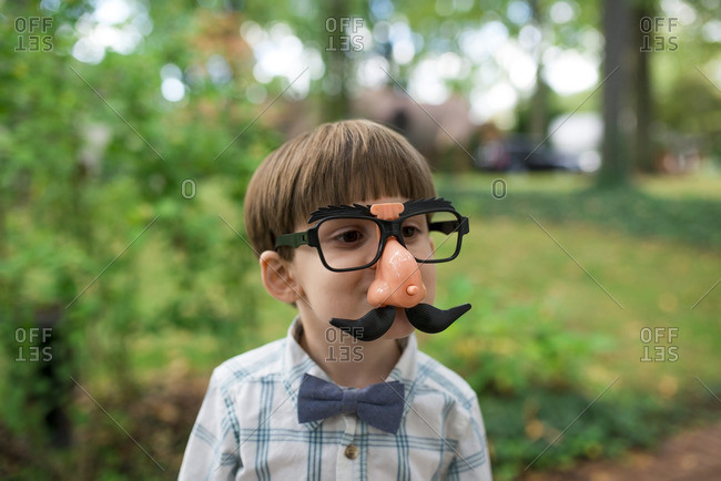 Little boy wearing silly mustache and nose mask