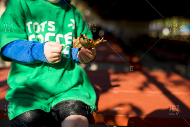Little boy sitting on a picnic table holding a brown leaf