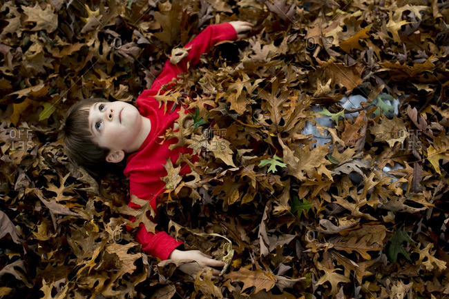 Boy lying in a pile of leaves