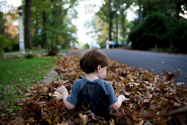 Rear view of a little boy playing in a pile of leaves