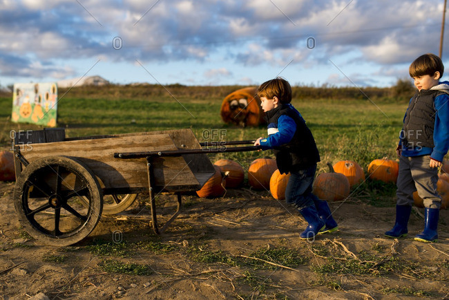 Little boy pushing a wagon on a pumpkin farm