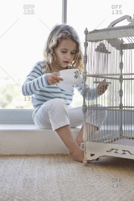Cute little girl playing with a toy bird and birdcage