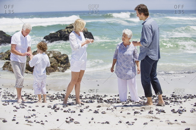 Multi generation family collecting shell on the beach