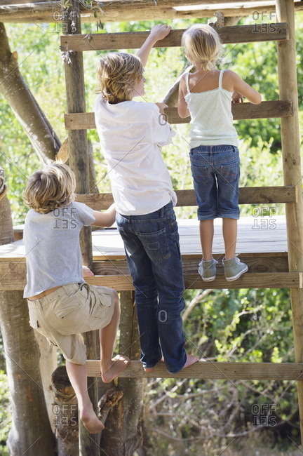 Rear view of children climbing ladders to tree house