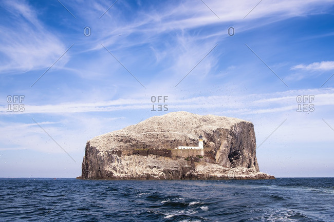 Bass Rock and Lighthouse