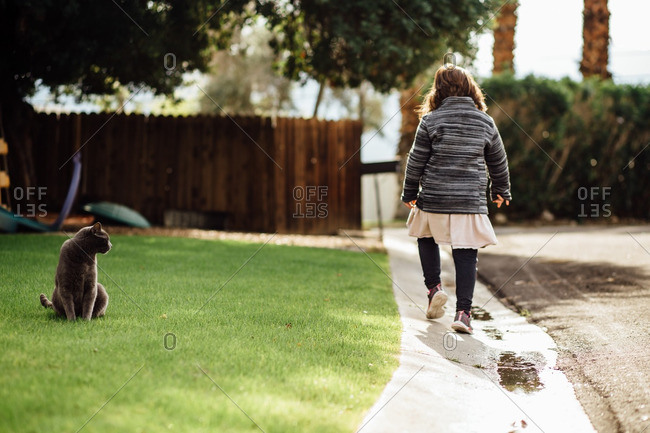 Cat watching a young girl walking down the street