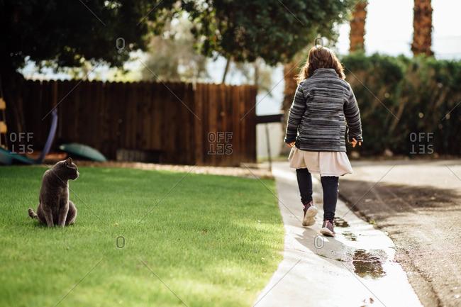 Cat watching a young girl walking down the street