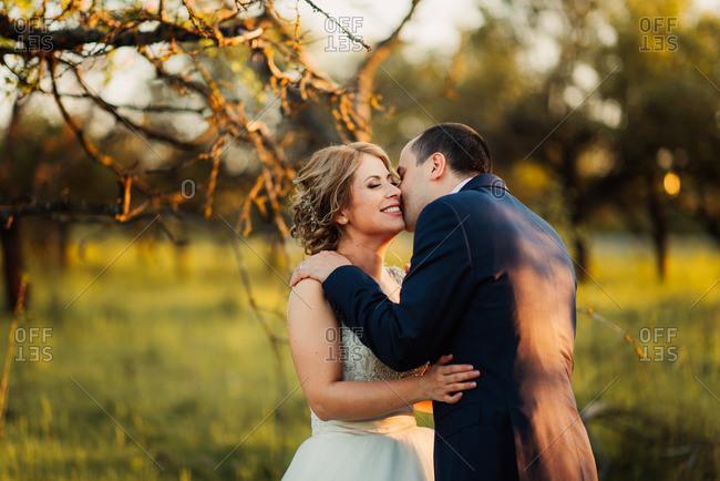 Groom kissing bride's cheek in field
