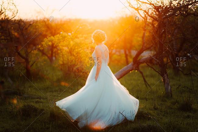 Bride in a sun dappled field