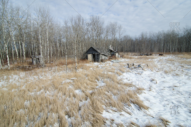 Abandoned shack in wintry prairie field