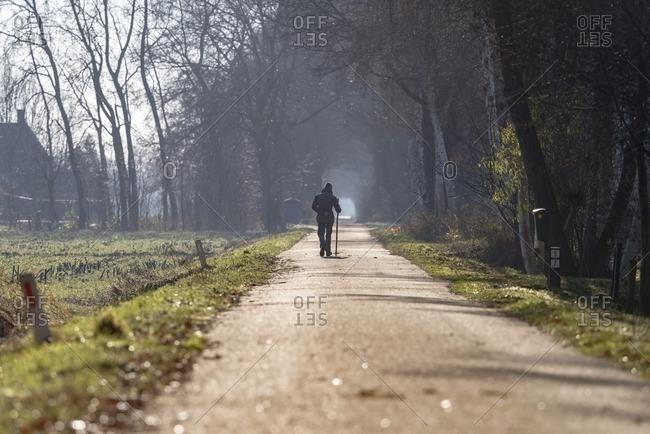 Rear view of woman hiking with stick on road in rural landscape. Geesteren. Achterhoek. Gelderland. The Netherlands.
