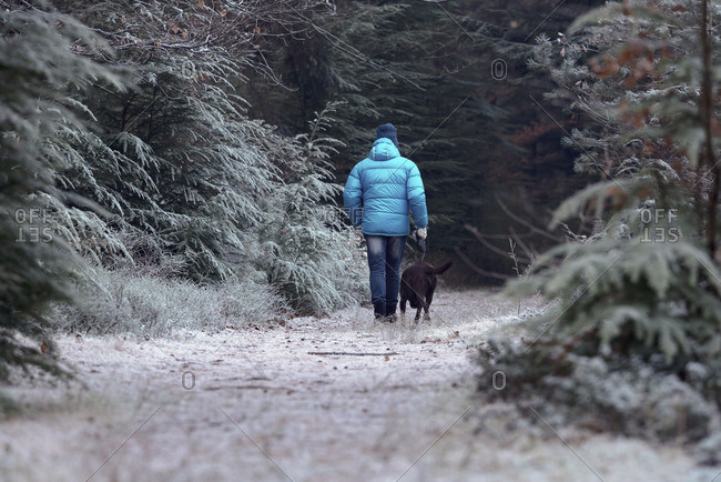 Man walking with dog on path in winter forest. Rear view.