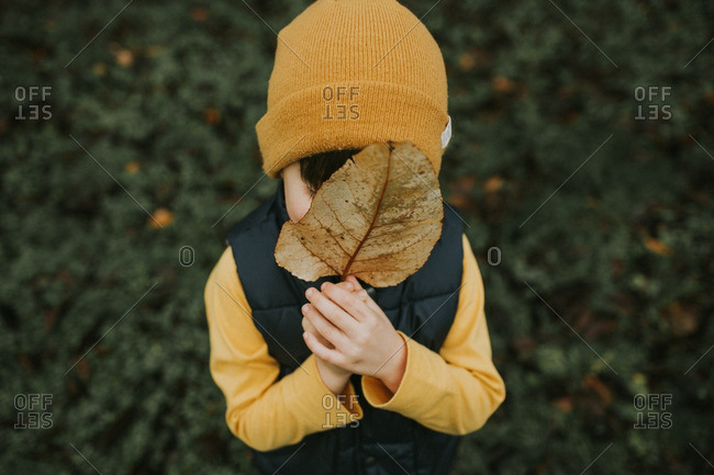 Boy in a yellow knit hat holding a yellow leaf over his face