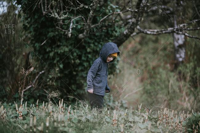 Boy exploring a field near a forest