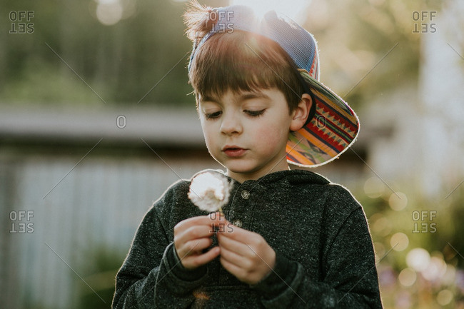 Boy with a backwards hat holding a dandelion