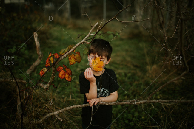 Boy leaning on a branch holding a yellow leaf over his face