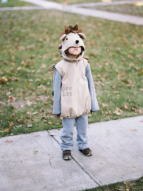 Boy dressed as a hedgehog for Halloween