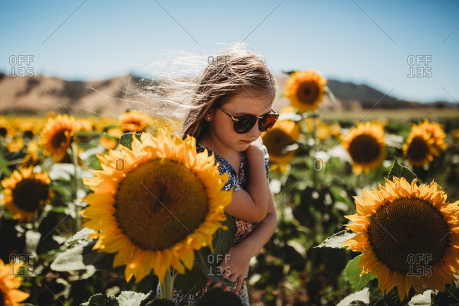 Portrait of a girl wearing sunglasses standing in field of sunflowers