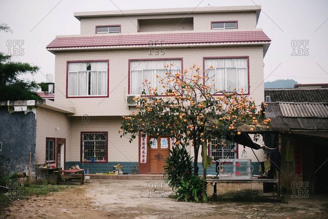 Guangdong Province, China - November 4, 2015: A home with an orange tree