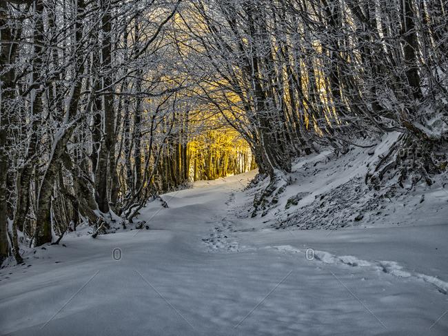 Italy- Umbria- Apennines- Mount Catria in winter