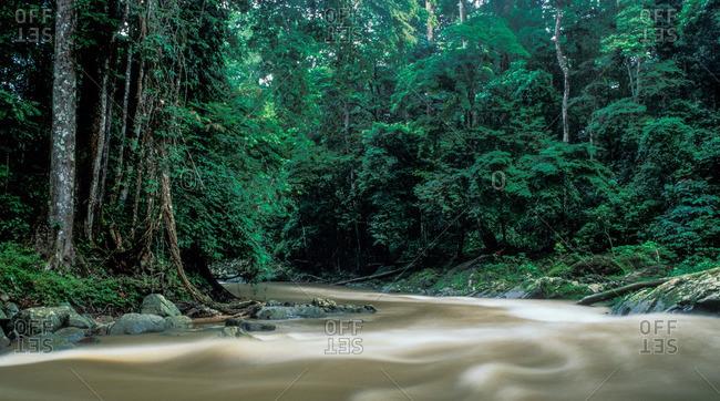 A Creek Flows Through Rocky Banks In Moukalaba-doudou National Park