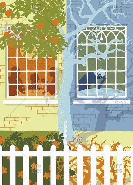 Family in a window with lonely neighbor in window next door