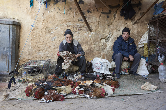 Fes, Morocco - January 10, 2014: Men selling chickens