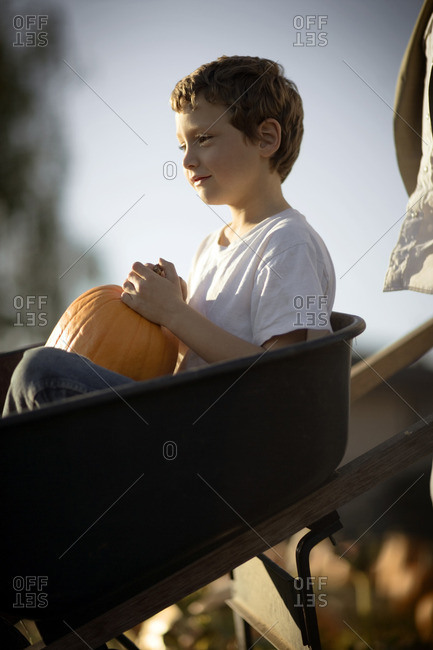 Young boy choosing a Halloween pumpkin at the pumpkin patch