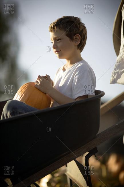 Young boy choosing a Halloween pumpkin at the pumpkin patch