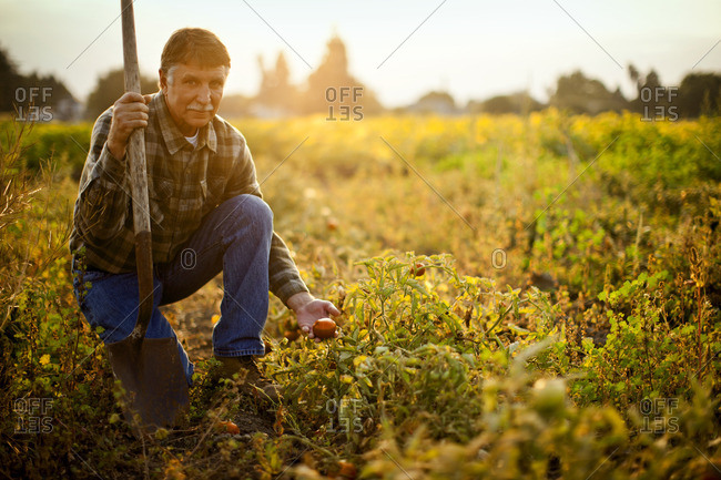 Farmer with vegetable crops he has grown