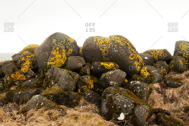 Stones covered with yellow lichen stacked on a hill