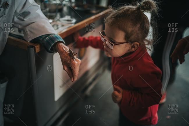 Girl examining locust on hand