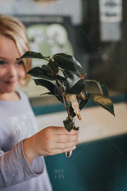 Girl holding a branch with large insect